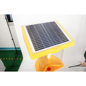 Solar Insect Killer Light